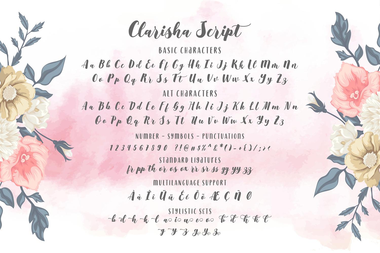 Clarisha Font Duo example image 6