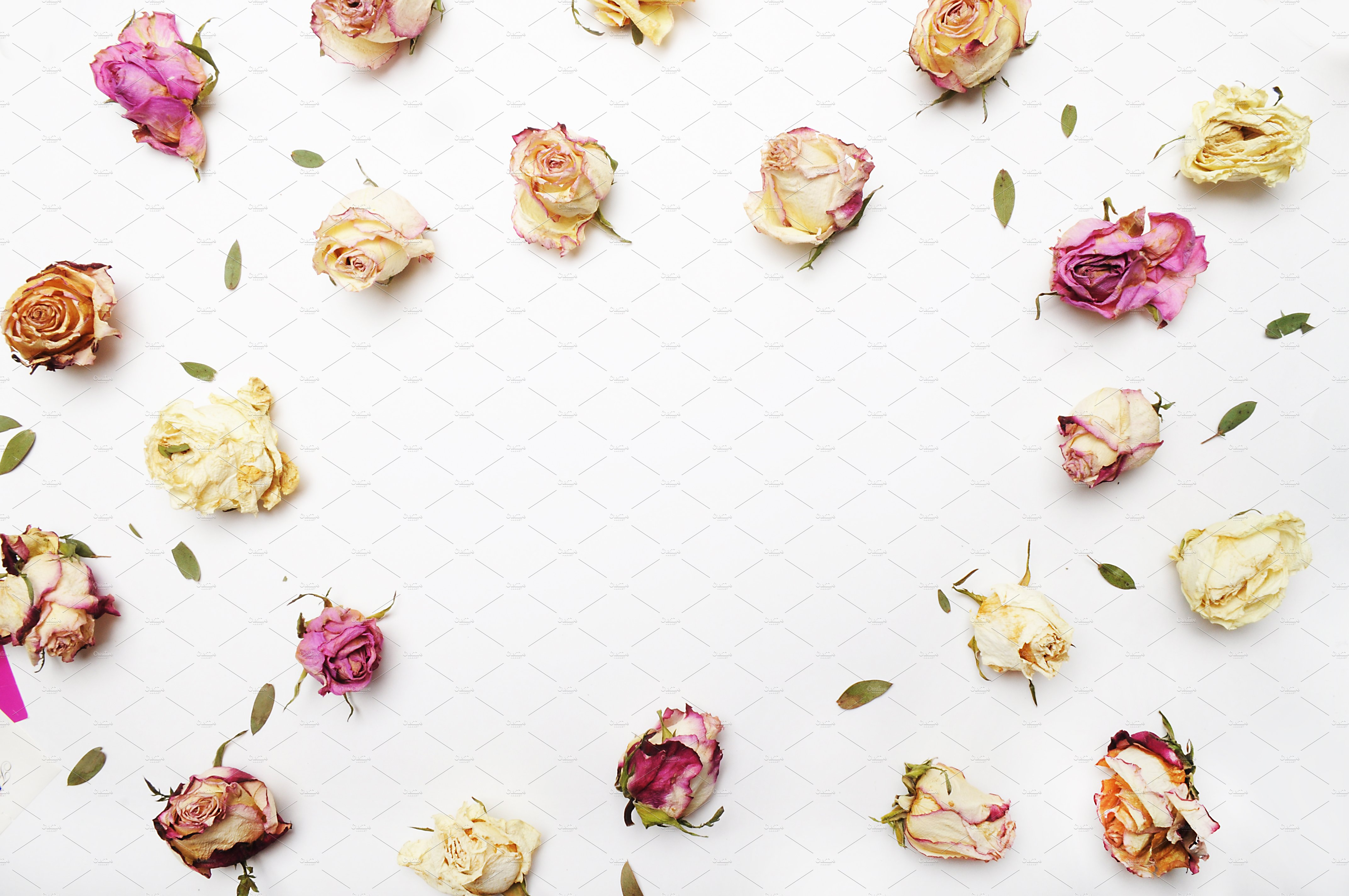 Floral Mockup Pack example image 6