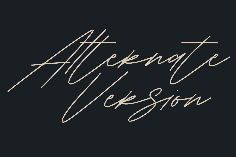 Shaloems Handwritten Signature Font example image 4