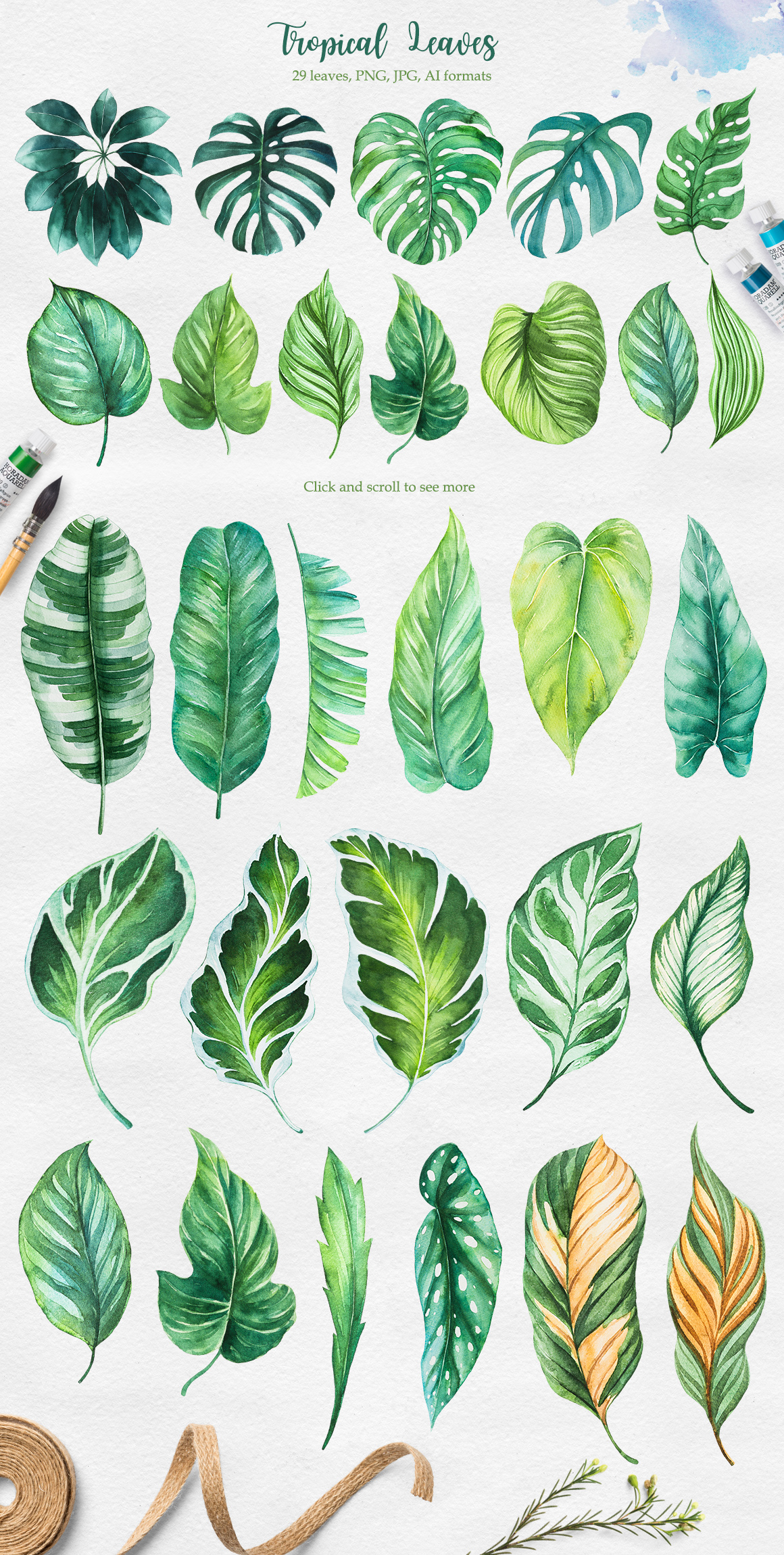 Tropical. Watercolor illustrations. example image 8