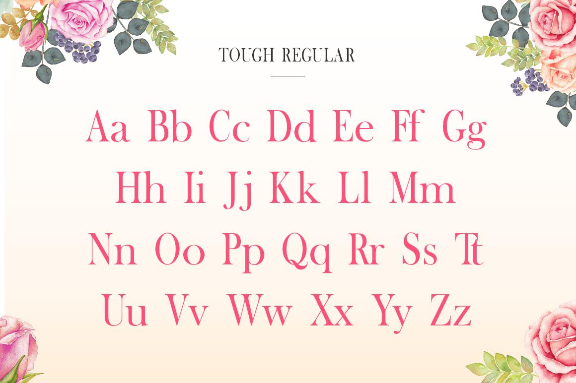 Tough Serif Font example image 6