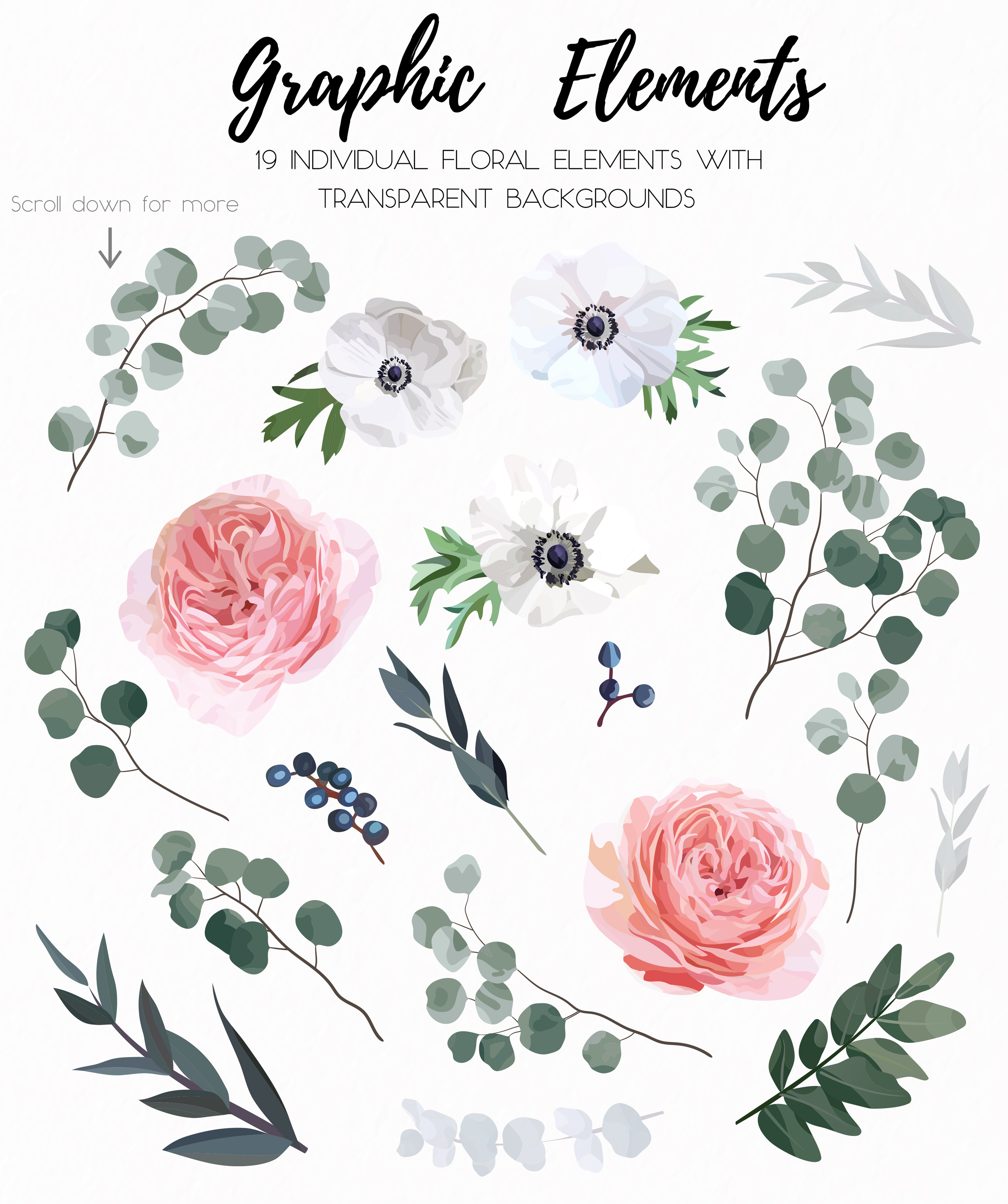 Garden Rose and Anemone - floral vector set example image 10
