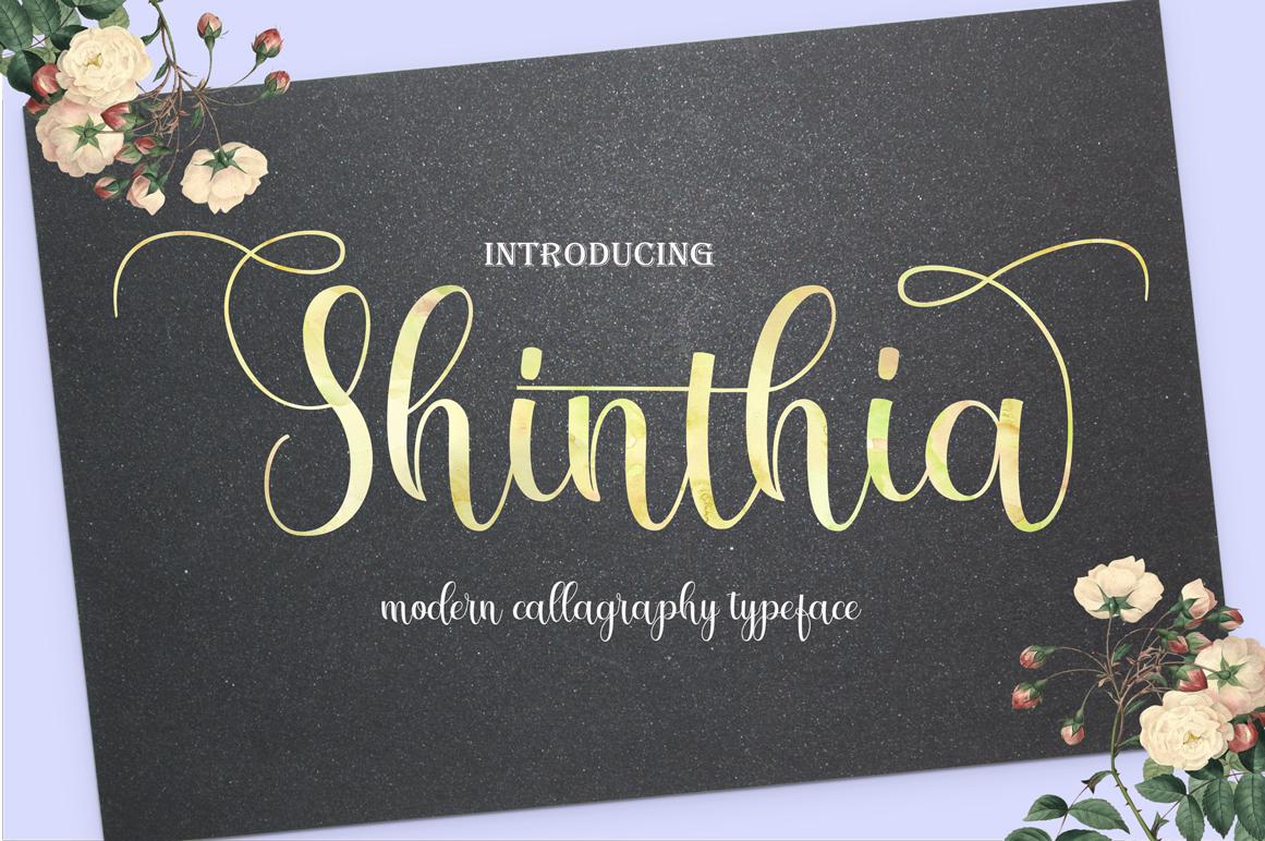 Shinthia FontDou example image 1