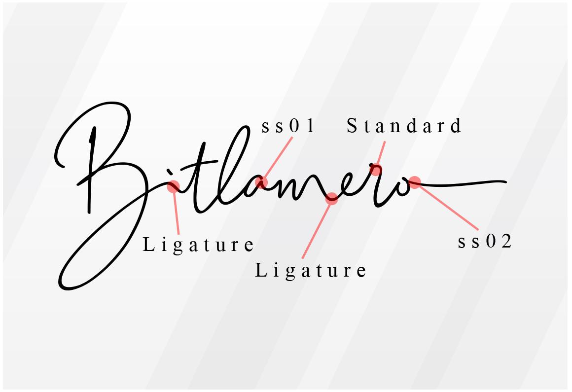 Bitlamero Script example image 23
