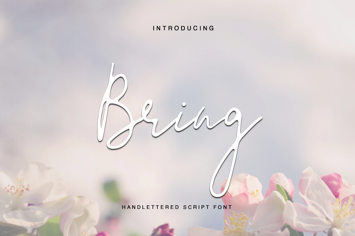 40 in 1 font bundle by Tommy James example image 28