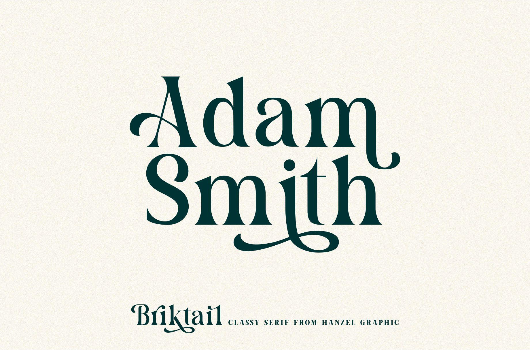 Briktail//Modern Serif Font example image 7