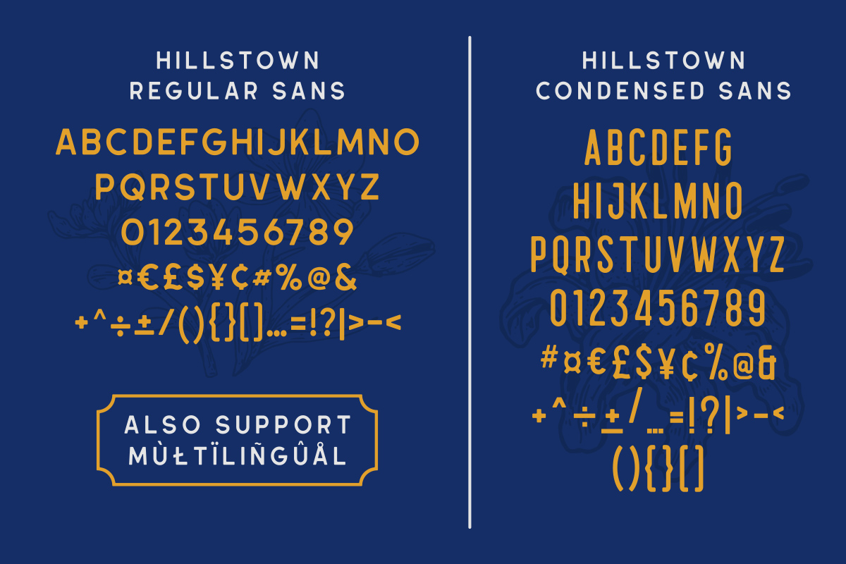 Hillstown Font Collection and EXTRA example image 5
