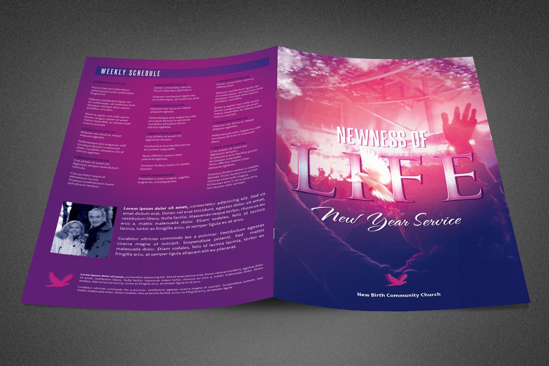 Newness of Life Church Bulletin example image 2
