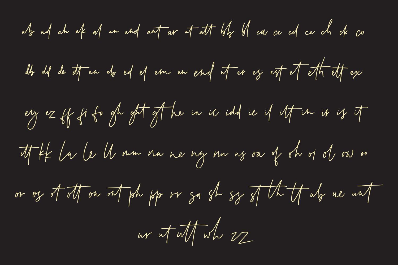 Testudo Signature Font example image 10