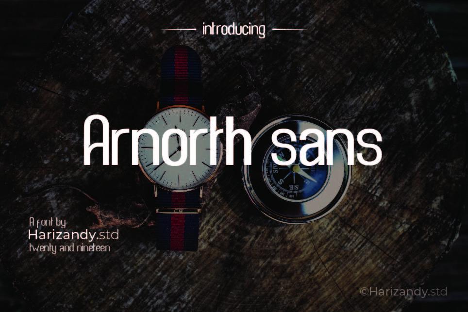 Arnorth sans example image 1