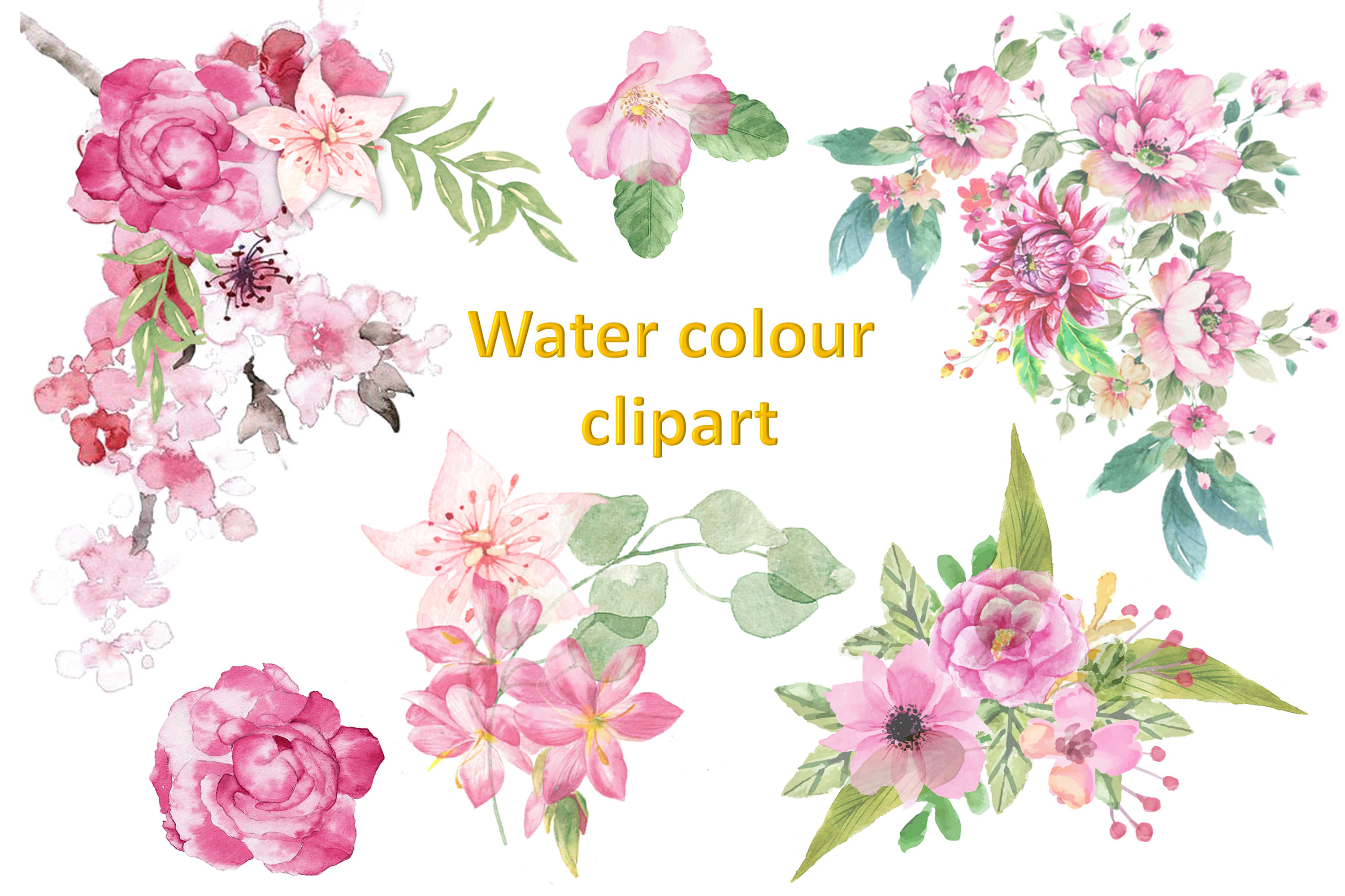 Watercolour Florals Clipart Bundle Commercial Use example image 2