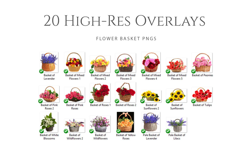 Fantasy Wild Flower Basket Photo Overlays example image 2