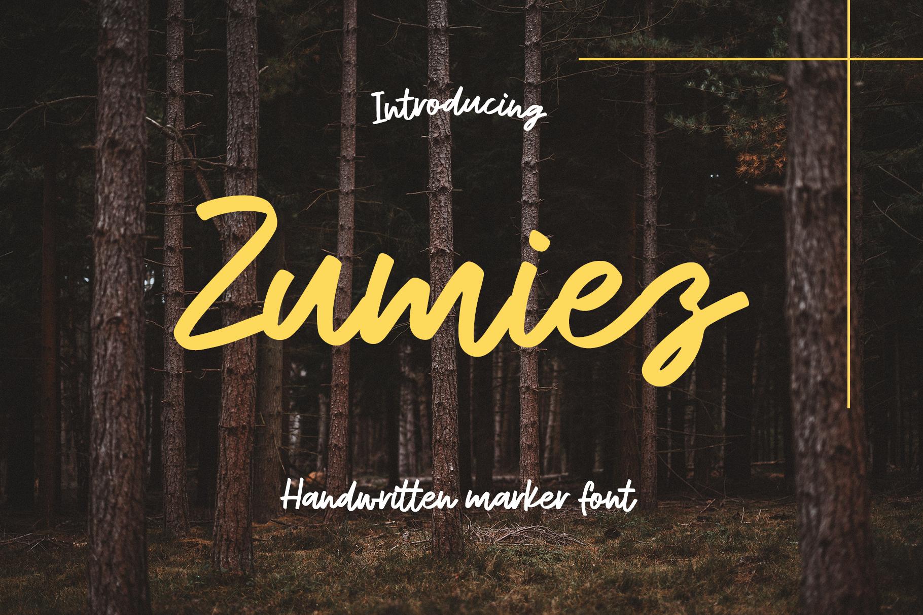 Zumiez example image 1