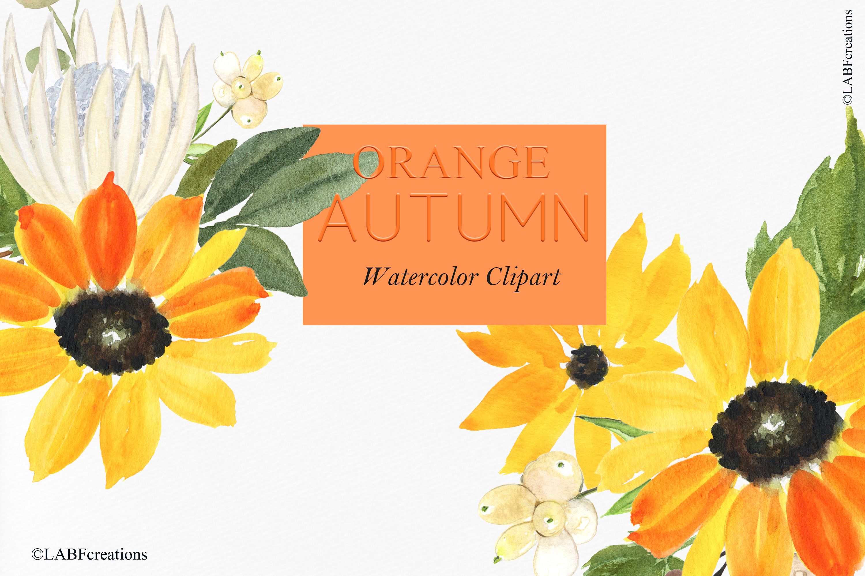 Orange, red and burgundy autumn flowers collection. example image 6