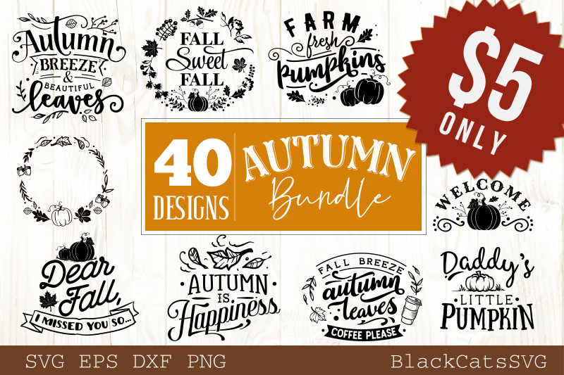 Autumn SVG bundle 40 designs Fall and pumpkins SVG bundle example image 1