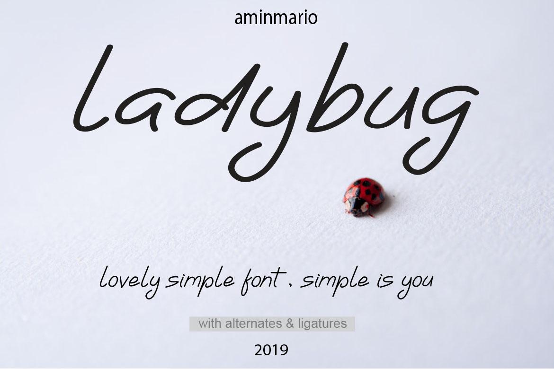 Ladybug | Simple Font example image 9
