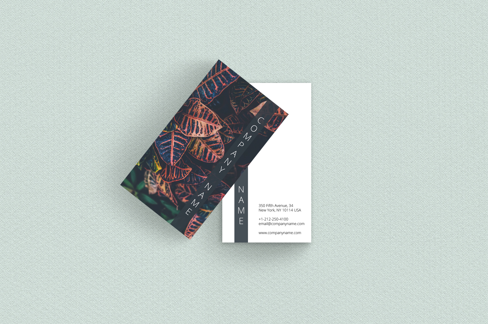 Asian Dream Business Card Template 2 example image 3