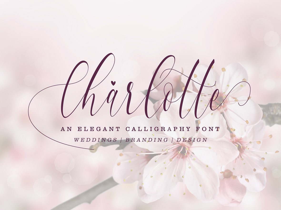 Charlotte Calligraphy Font example image 1