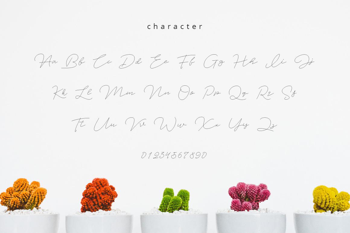 Jet Seat Script example image 7