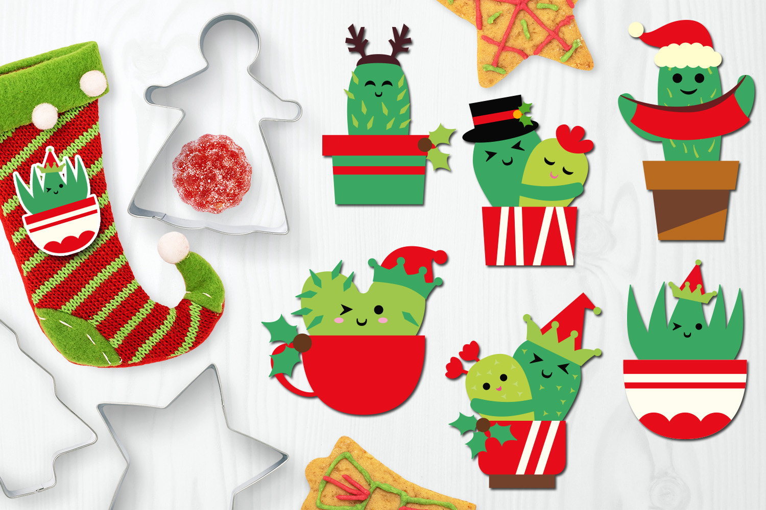 Christmas Bundle, Cactus and Flowers Illustrations example image 7