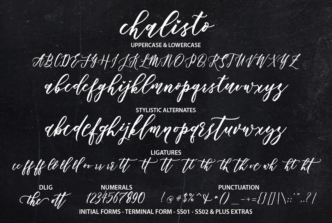 Chalisto Script + Extras example image 9