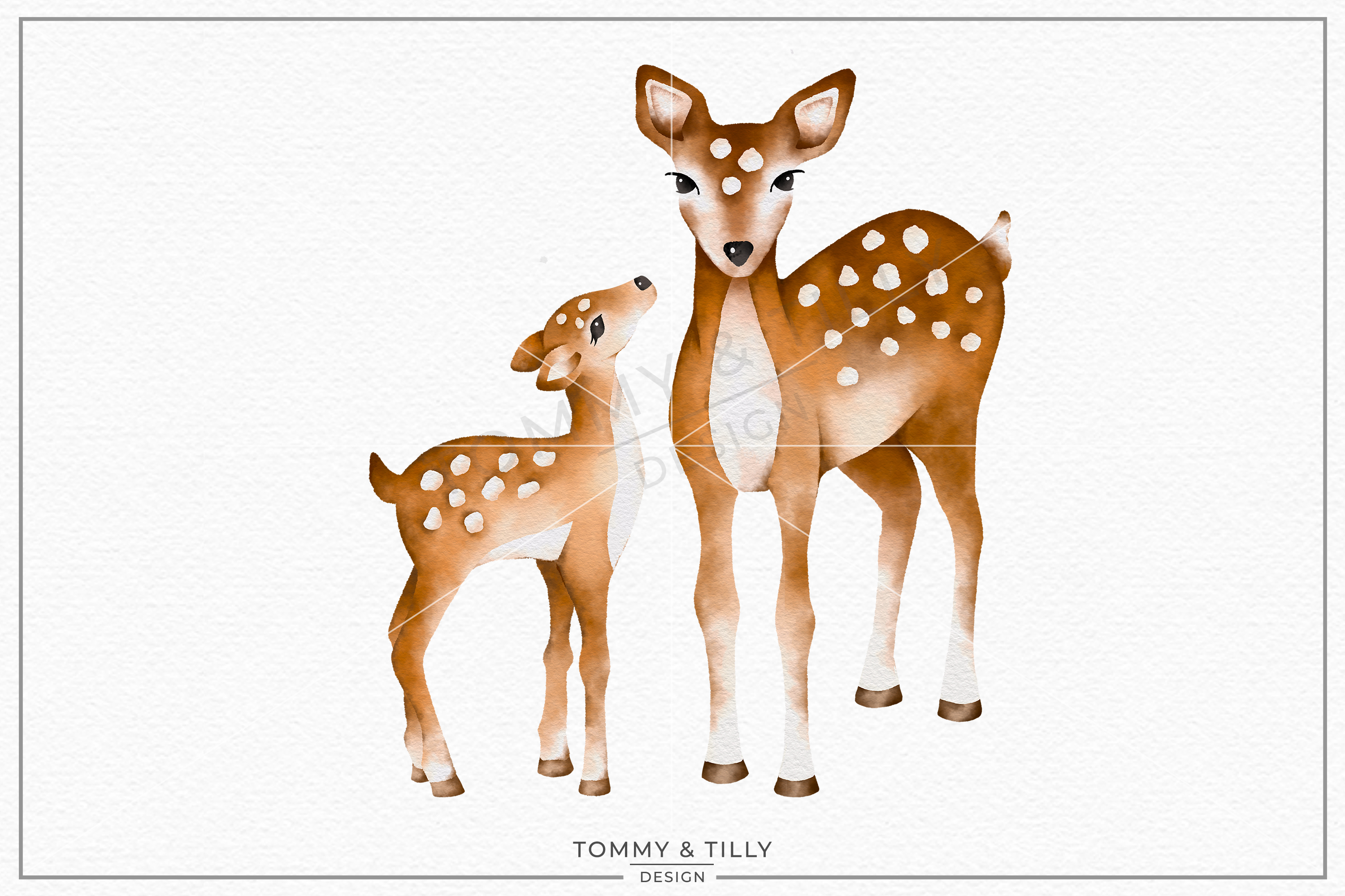 Deer baby. Mummy and no sublimation