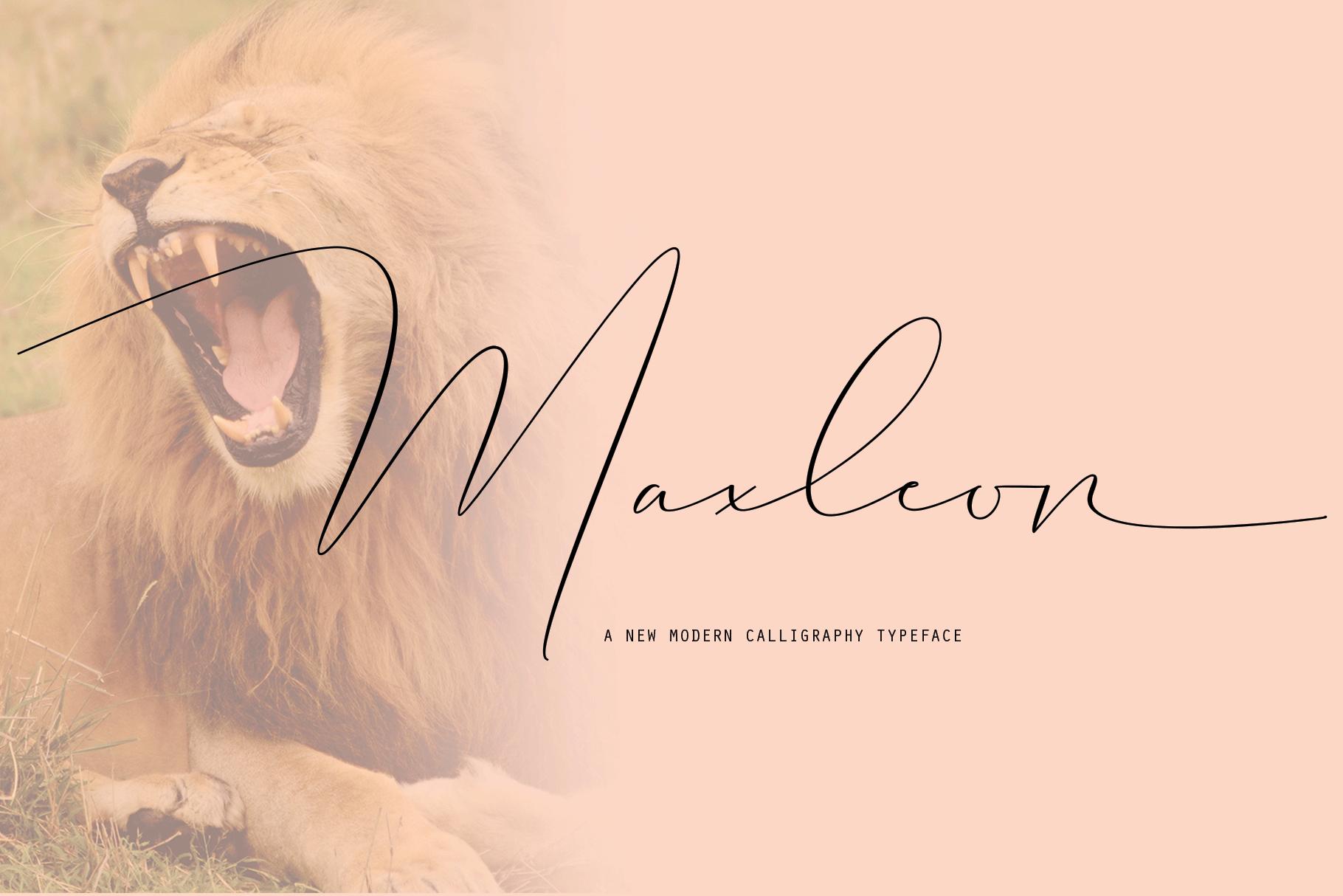 Maxleon example image 1