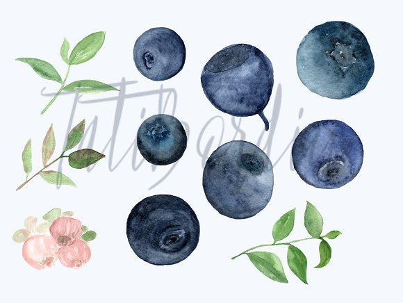 Watercolor Blueberries Clip Art example image 3
