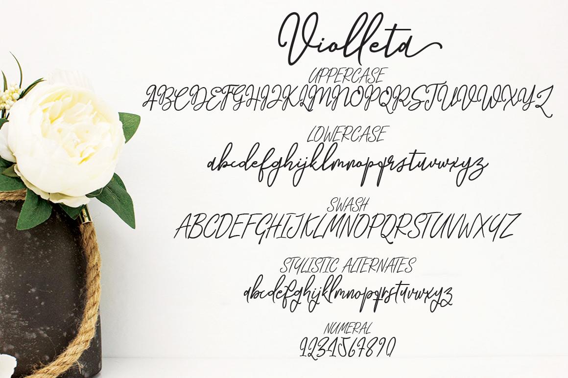 Violleta Script example image 9