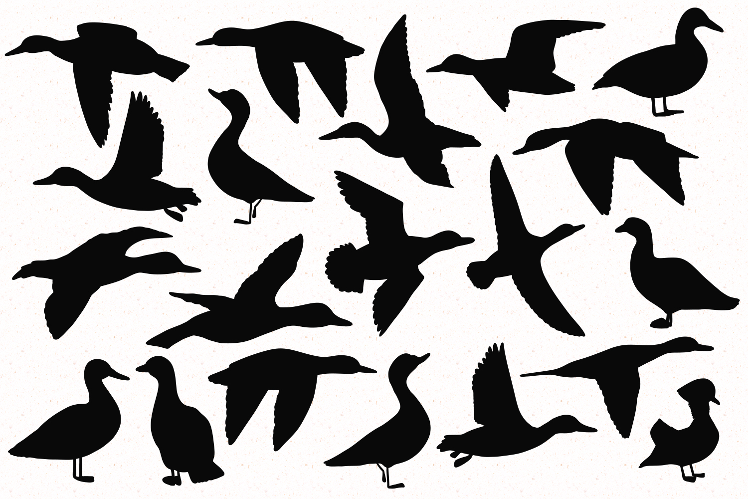 Duck Breeds Silhouettes example image 2