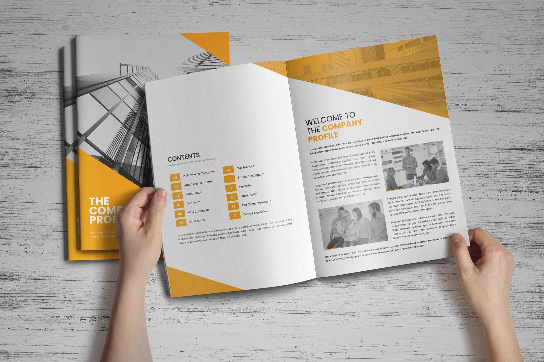 Company Profile Brochure v8 example image 2