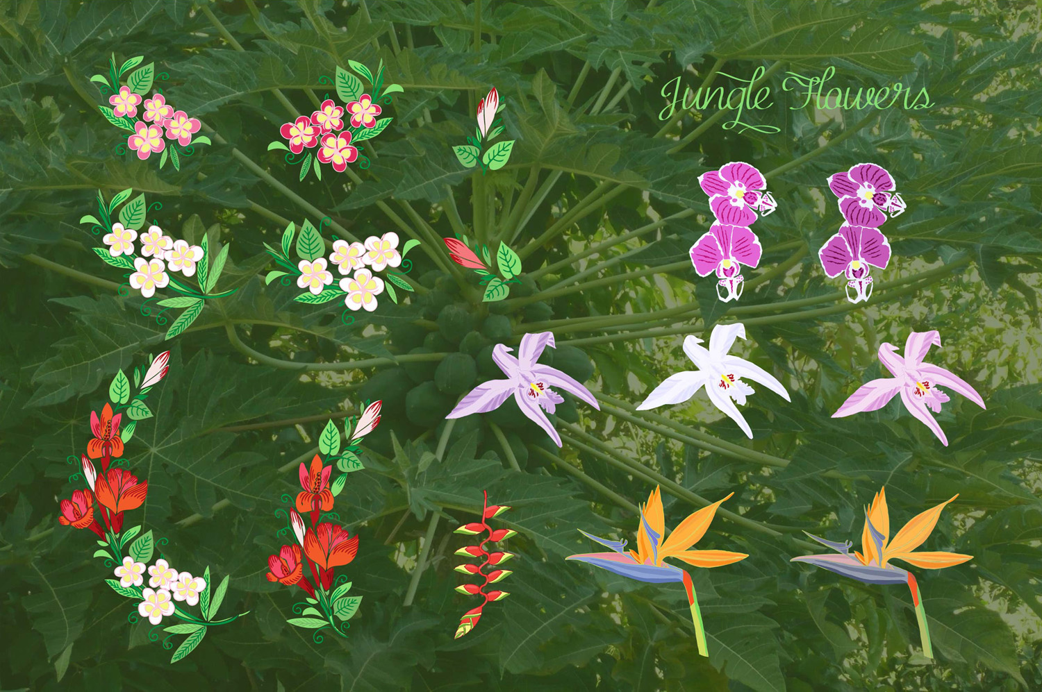 Jungle clipart with flowers example image 4
