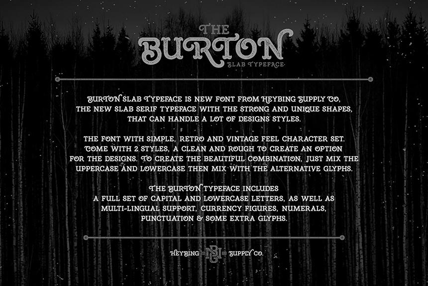 Burton Slab Typeface & Bonus example image 5