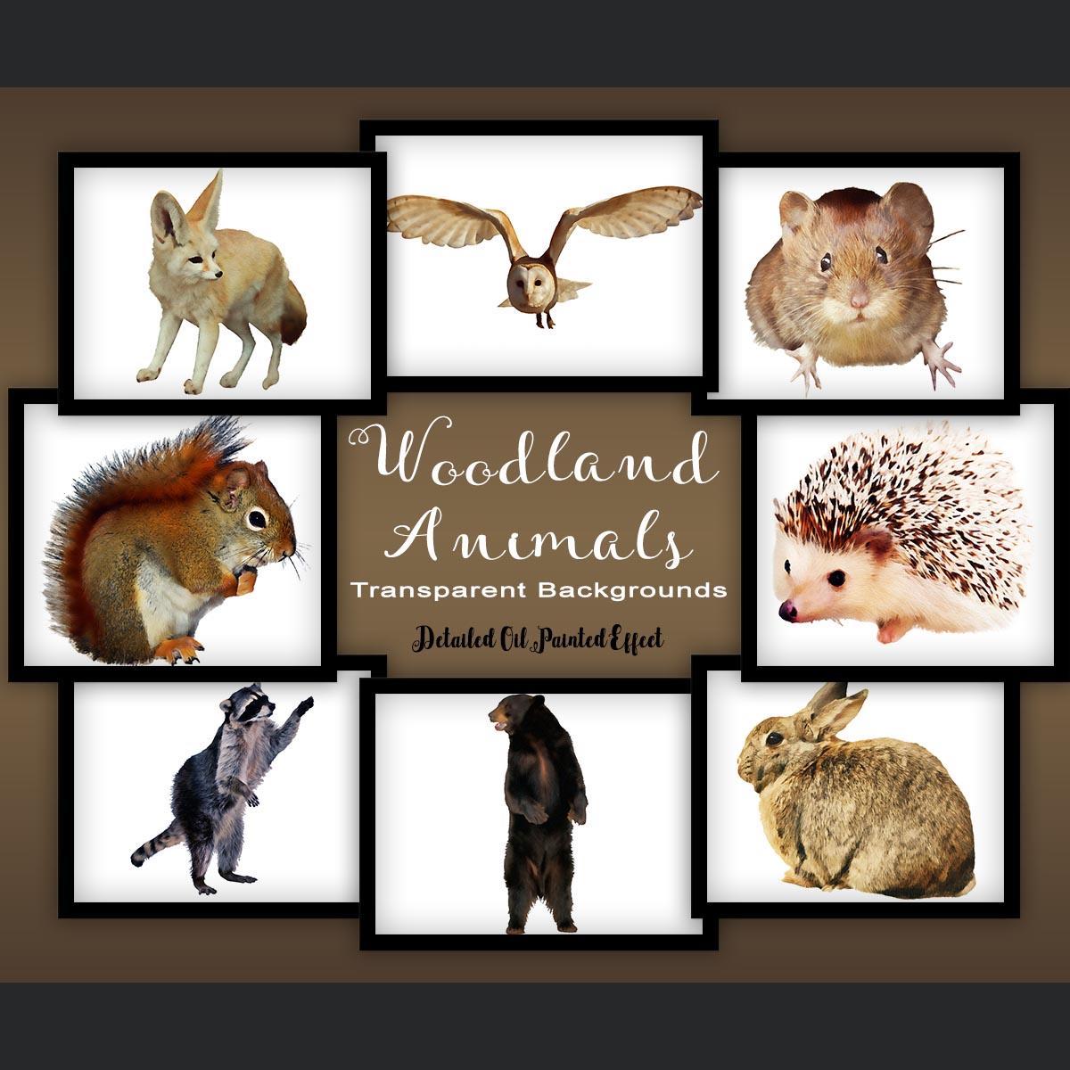Woodland Animal Set V1 example image 1