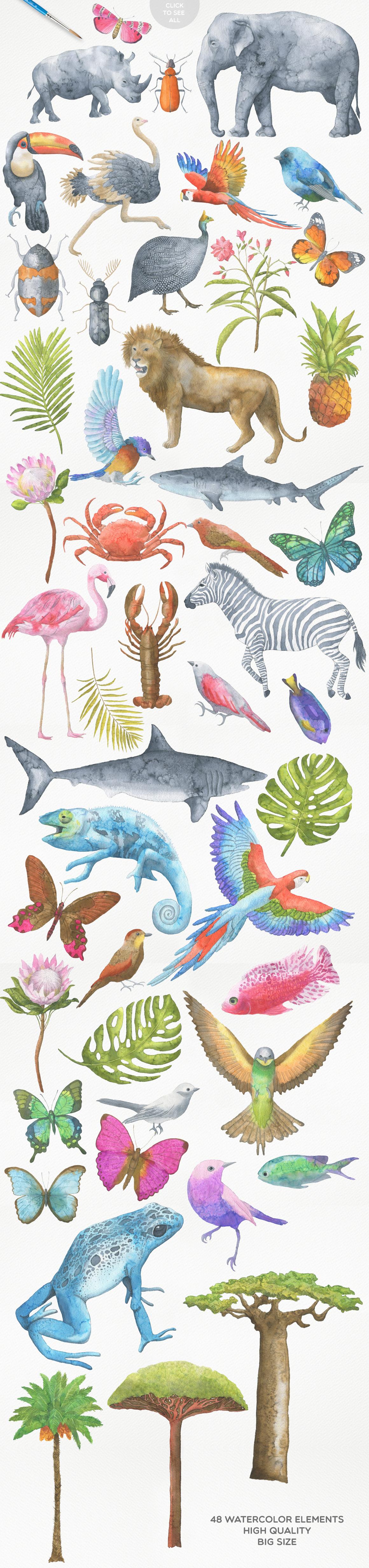 Safari Watercolor Collection example image 2
