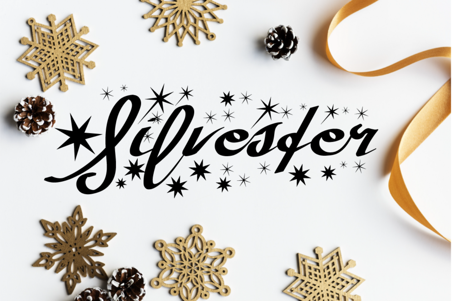 Silvester Fun Holiday Script example image 1