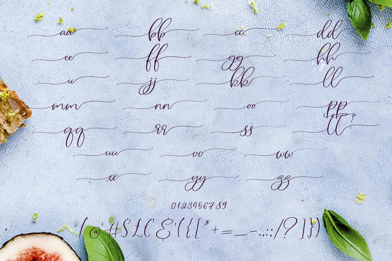 Figs Pie Script Font example image 10