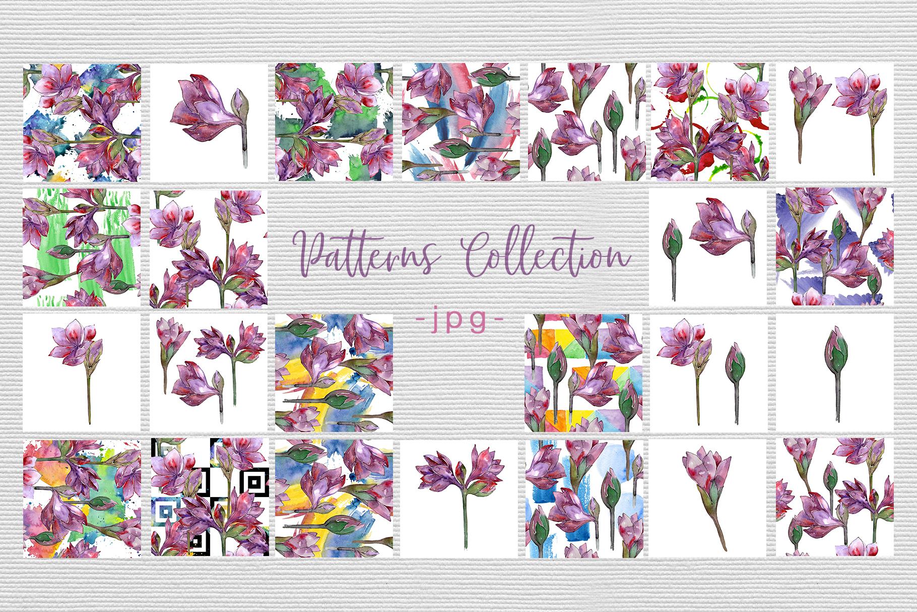 Purple amaryllis PNG watercolor set example image 9