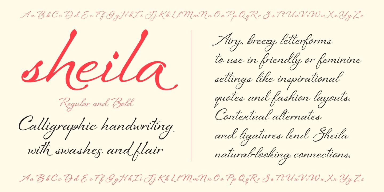 Sheila Regular example image 4