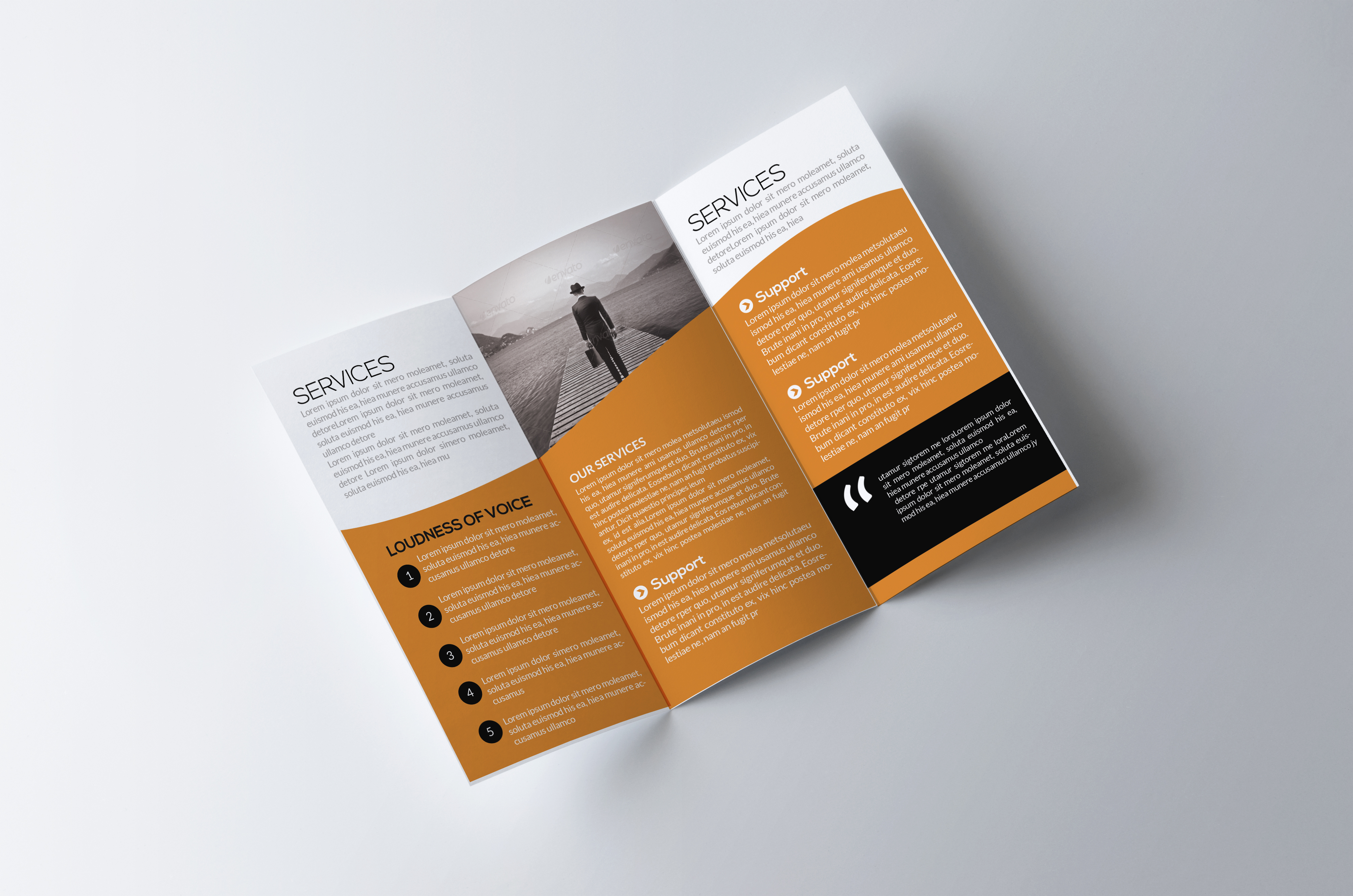 Trifold example image 2