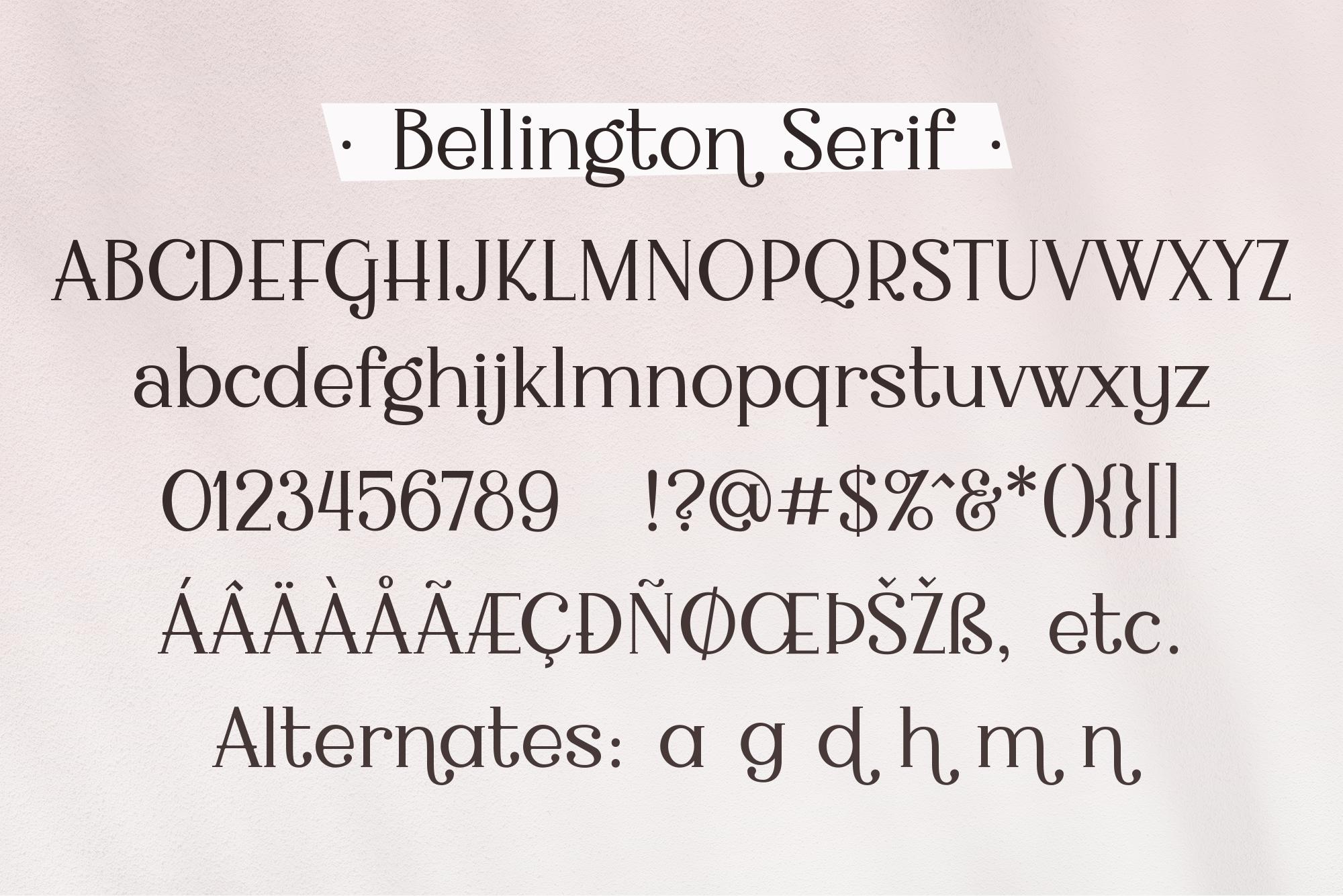 Bellington, a charming serif font example image 5