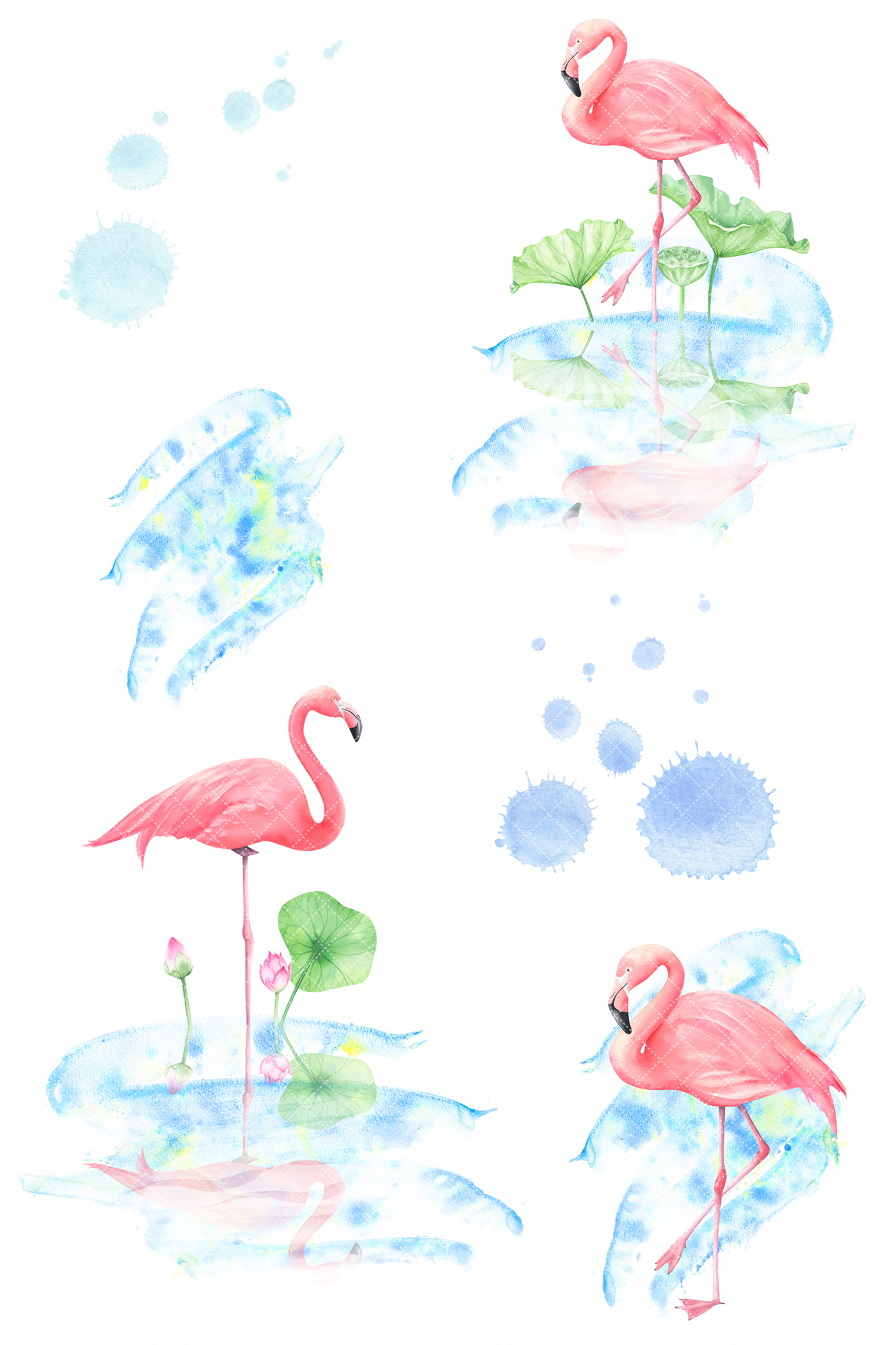 flamingo watercolor clipart graphic designer follow