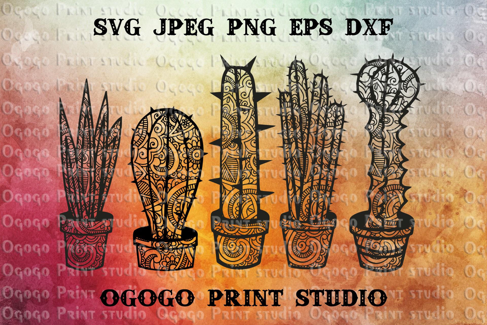 Cactus SVG, Zentangle SVG, Succulent svg, Mandala svg example image 1