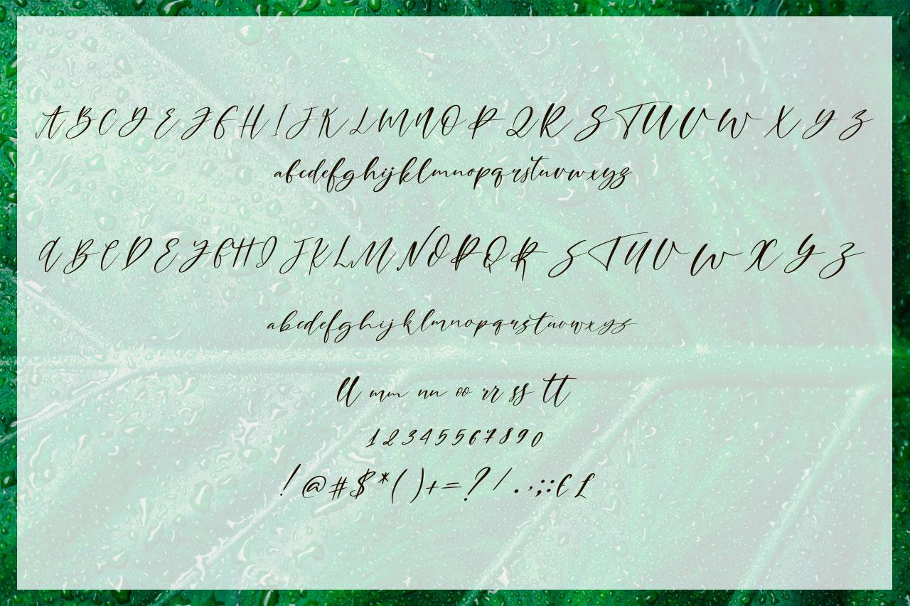 Cathia Script Font & Logos example image 7