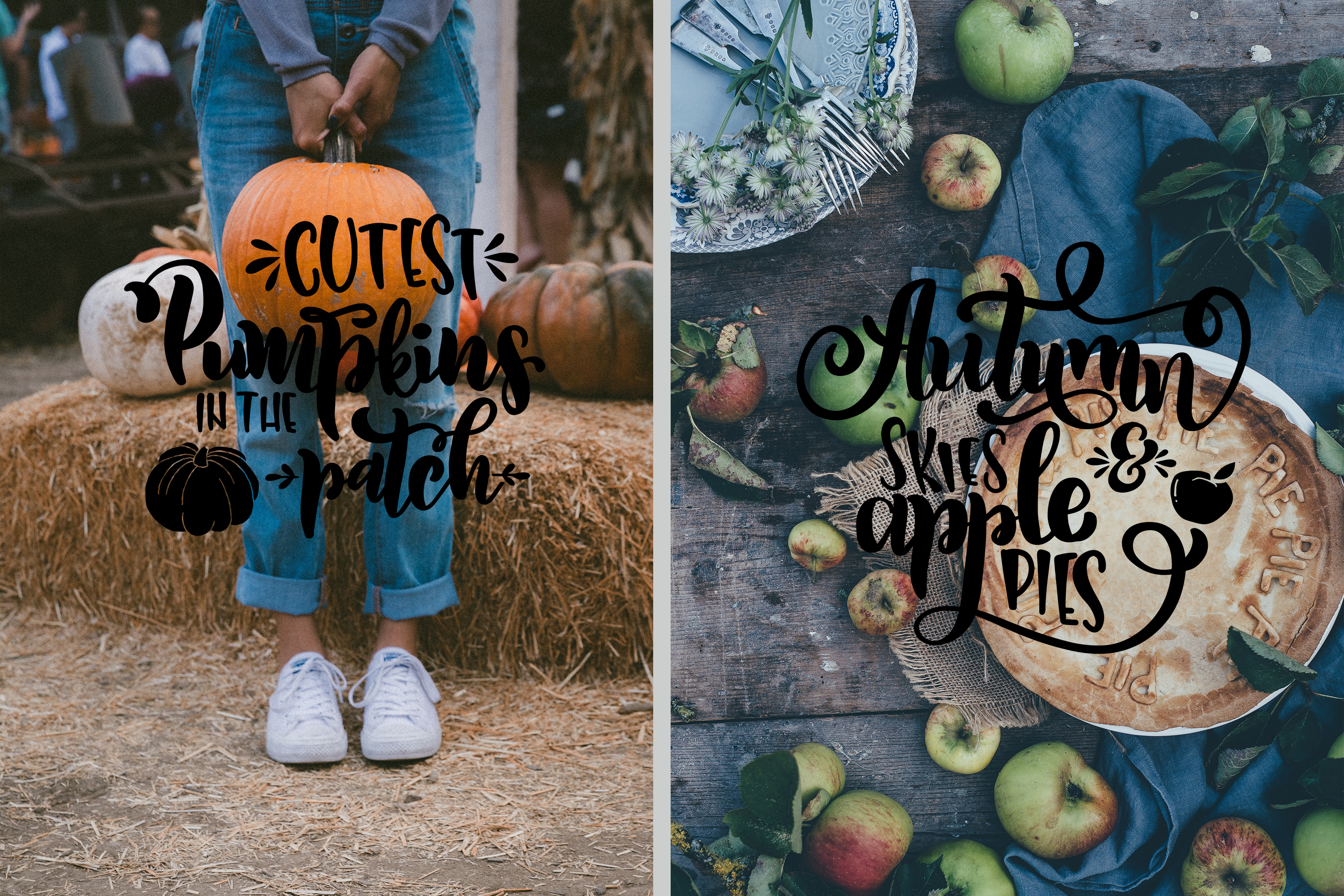 Fall svg BUNDLE BIG set of 80 quotes Autumn Thanksgiving example image 6