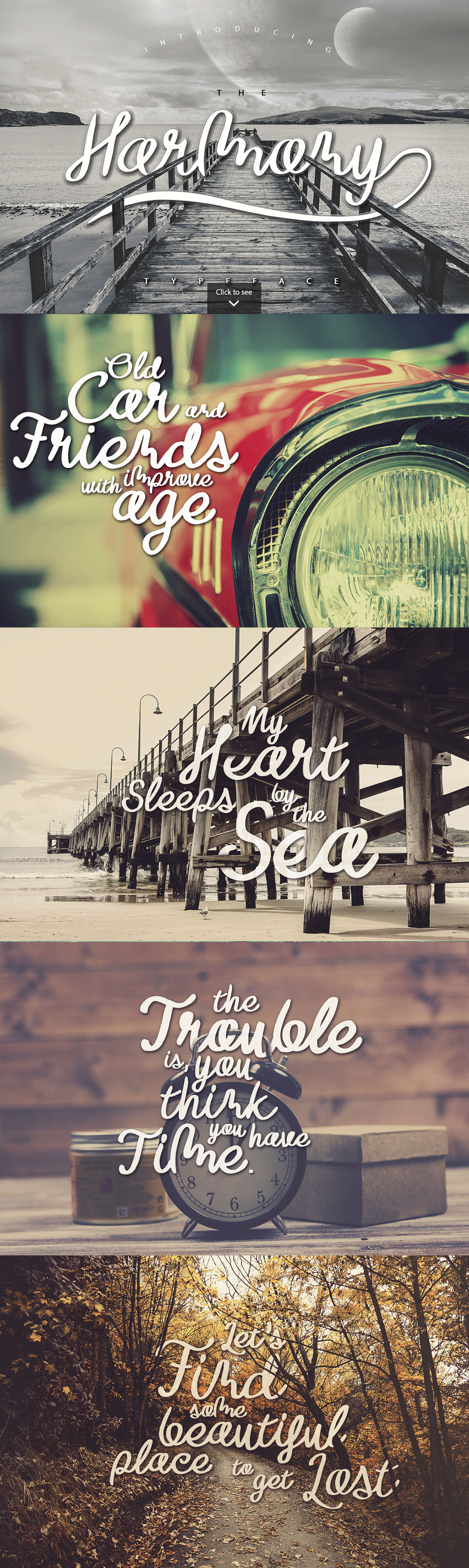 15 Essential Font Bundle example image 7