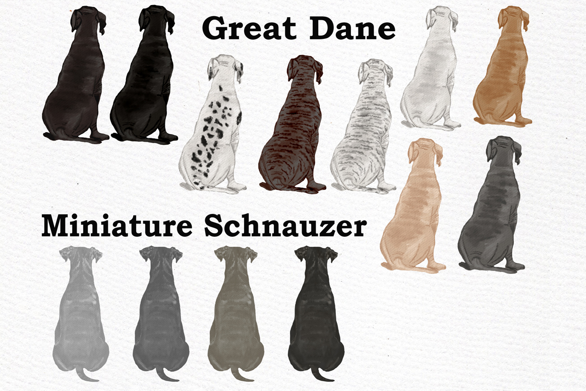 Dog Clipart, Dog breeds, Pet clipart,Puppies clipart Dog Png example image 7