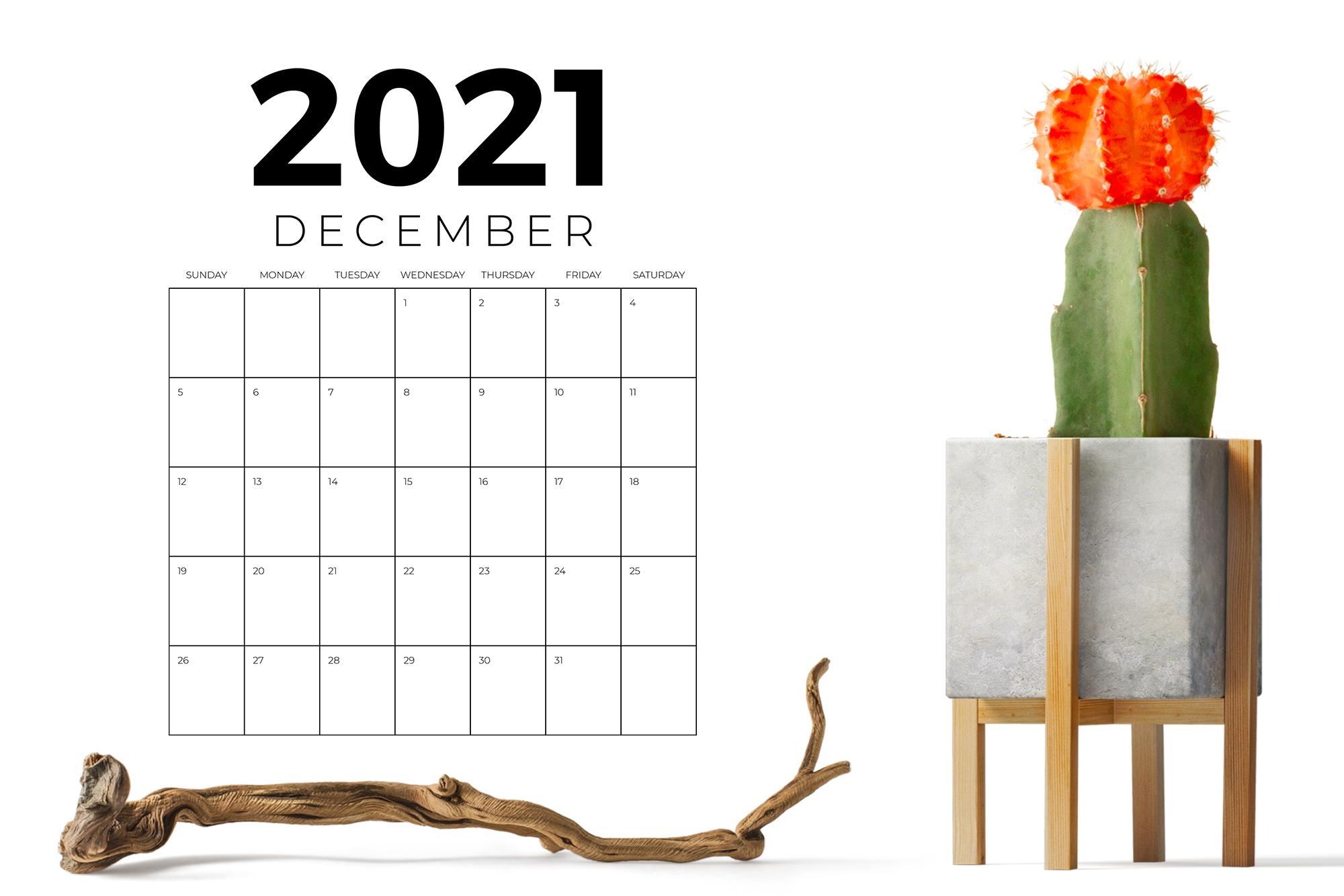 Vertical 8.5 x 11 Inch 2021 Calendar example image 7