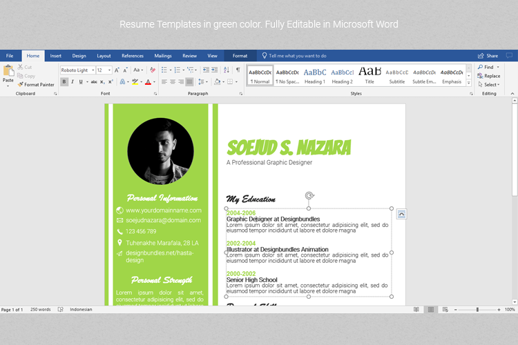 A4 Resume Templates Word example image 2