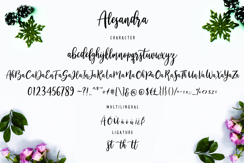 Alesandra Modern Calligraphy example image 7